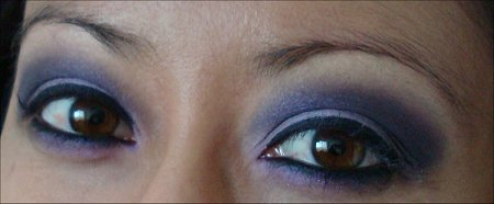Purple Eye of the Day