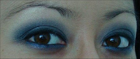 Gray & Blue Eye of the Day