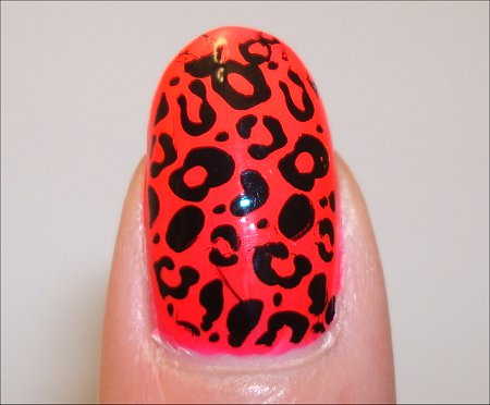 Konad Nail Art Leopard Swatches