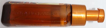 Bath & Body Works Iced Gingerbread Anti-Bacterial Foaming Soap Review & Pictures