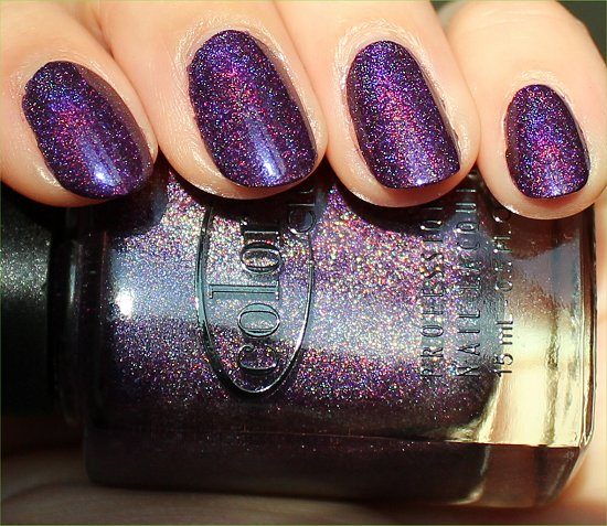 Color Club Purple Holo Polish Wild At Heart Swatch & Review