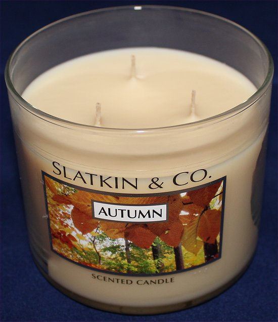 Bath & Body Works Slatkin & Co. Autumn Candle Pictures & Review