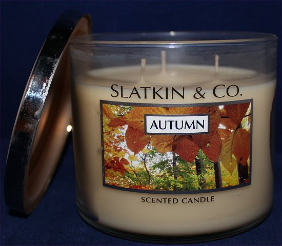 Bath & Body Works Slatkin & Co. Autumn Candle Review & Pictures