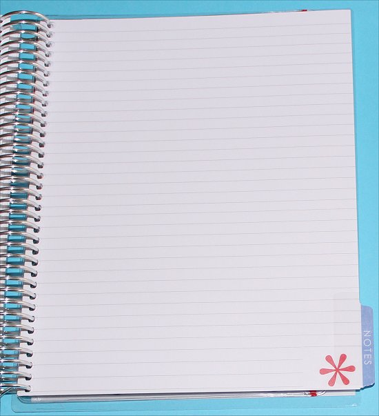 Erin Condren Life Planner Lined Pages