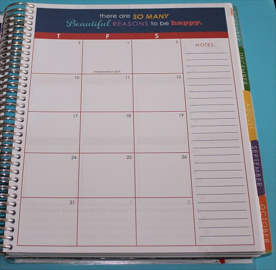 Erin Condren Life Planner Monthly View 2