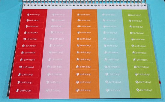 Erin Condren Life Planner Stickers Birthday