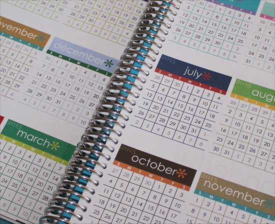 Erin Condren Life Planner Year at a Glance